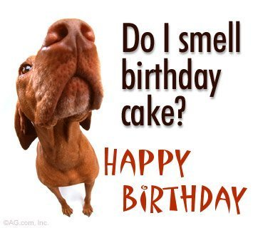 do_i_smell_birthday_cake