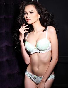 Miss Vietnam's Fadil Berisha lingerie photo