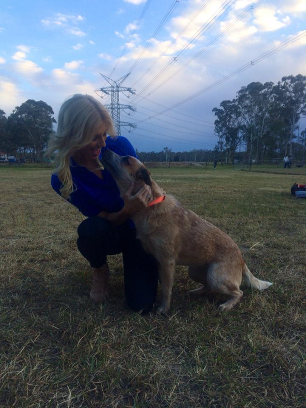 Miss World Australia and Miss World Oceania 2013 Erin Holland relishing her new role as Ambassador for the Australian Working Dog Rescue.