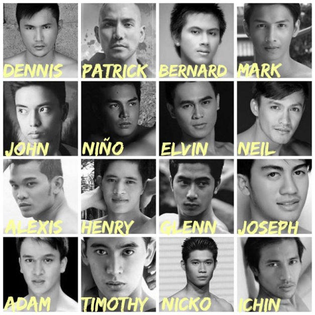 16 of the 20 Official Candidates of Misters of the Philippines 2014