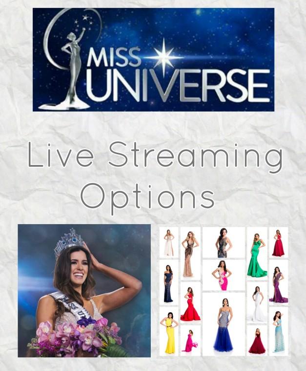 Options trading live stream